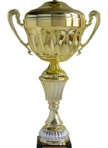 """Puchar Super Produkt Mleczarski 2010 roku Najlepszy z Najlepszych w kategorii NATURA otrzymał Ser pełnotłusty tradycyjny Podlaski na targach """"Mleko-Expo 2010""""."""